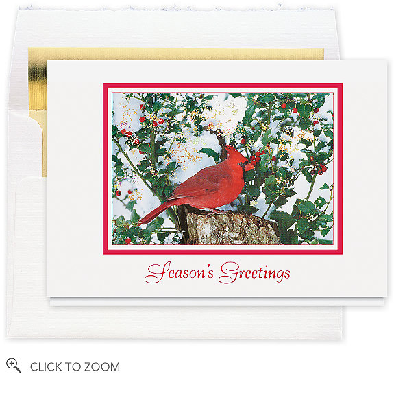 Cardinal and Berries Seasons Greeting Card