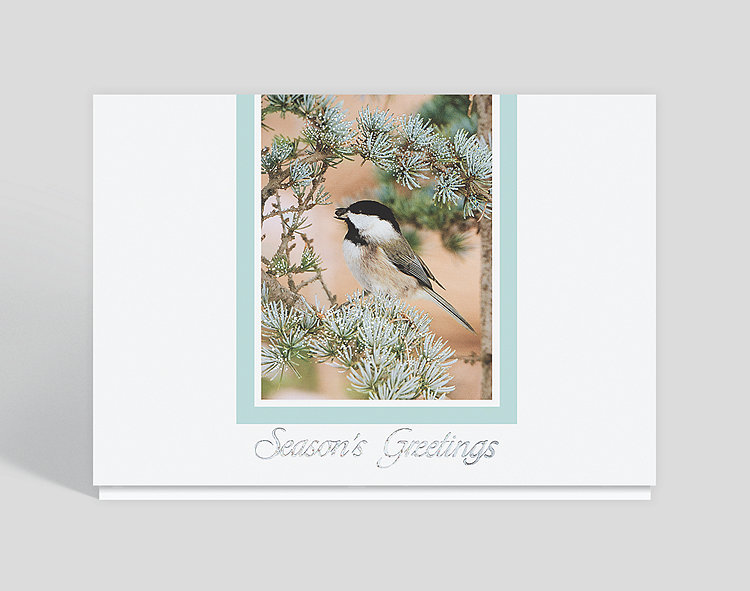 Frosted Perch Wildlife Greeting Card - Holiday Cards