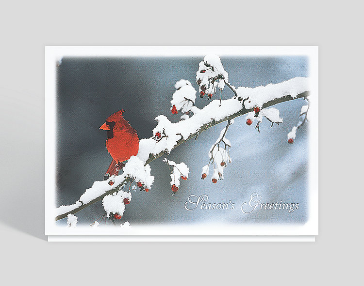 Holiday Cardinal Christmas Card - Business Christmas Cards