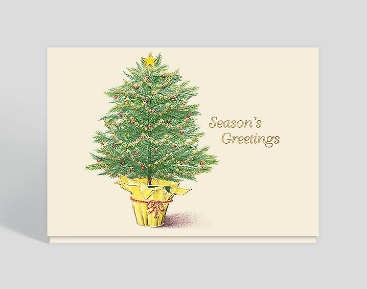 Evergreen Greetings Card - Season's Greetings