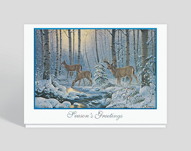 Natures Wonder Holiday Card - Season's Greetings