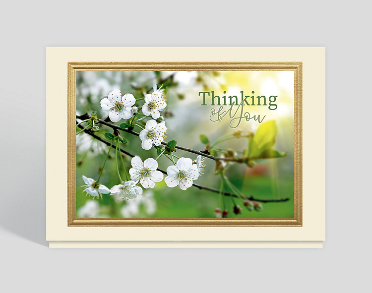 Beautiful Blossom Thoughts Thinking of You Card