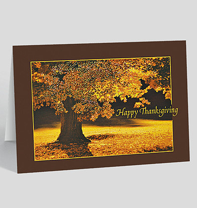 Business thanksgiving cards the gallery collection thanksgiving glow greeting card m4hsunfo