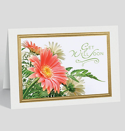 Gerbera Daisy Get Well Card
