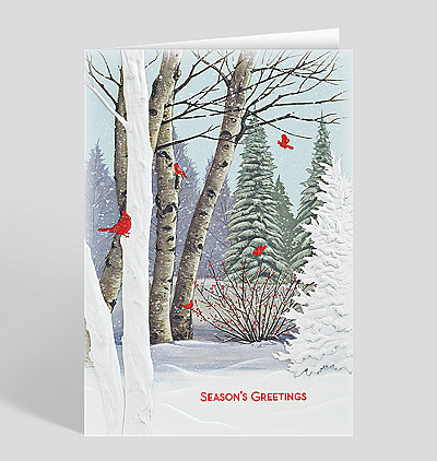 Birch Tree Cardinals Holiday Card