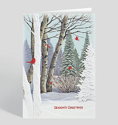 Birch Tree Cardinals Holiday Card